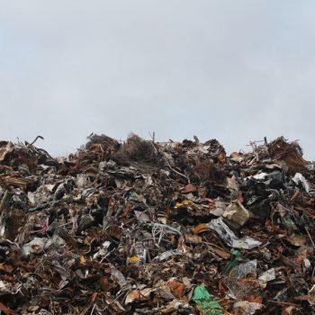 В Подмосковье откроют семь мусороперерабатывающих заводов
