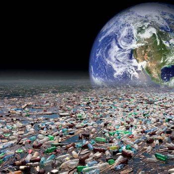 Сможет ли пластик растительного происхождения помочь спасти планету от загрязнения?