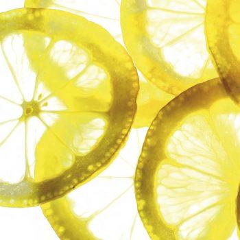 Тонко  порезанный  лимон
