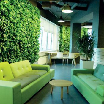«Зеленая революция»  в офисе