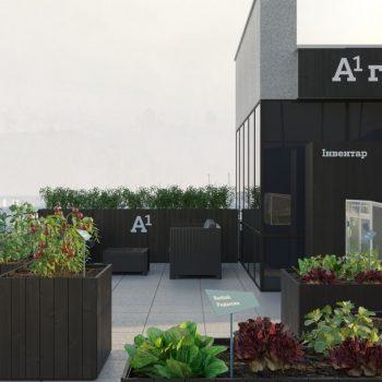 На крыше минского офиса А1 будет расти картошка